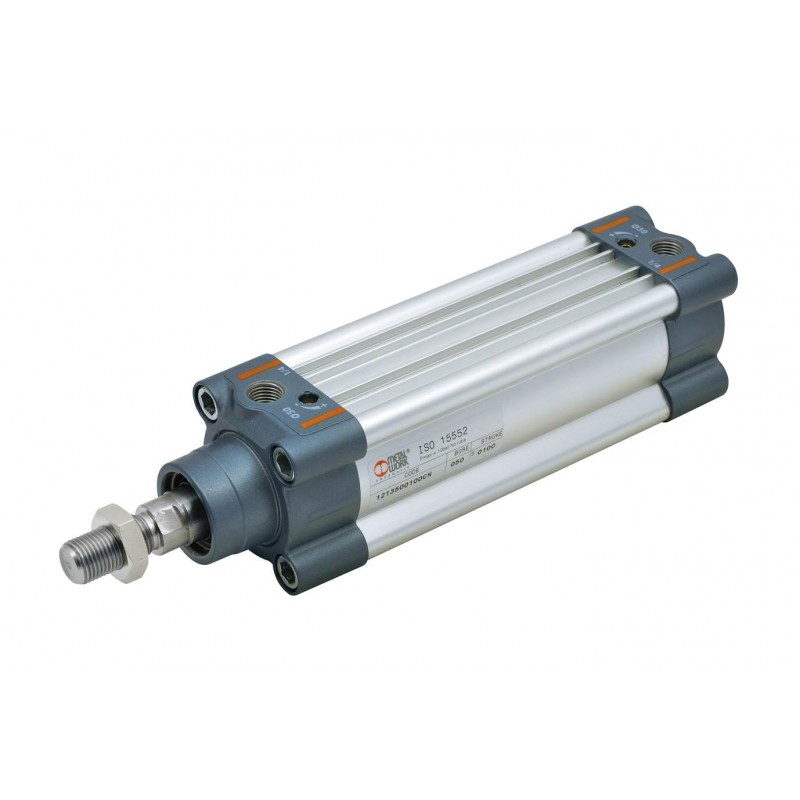Cilindro ISO 15552 Série 3 50x250 -1213500250CN